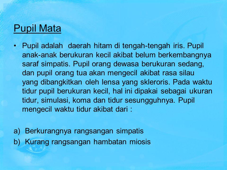 Pupil Mata