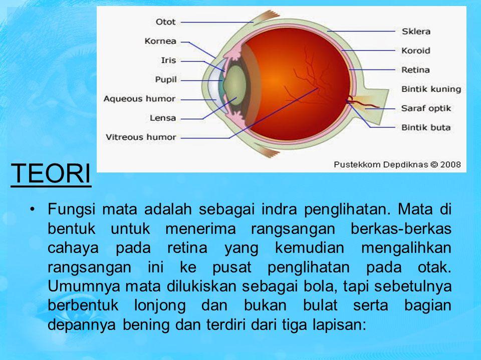 Fungsi mata adalah sebagai indra penglihatan