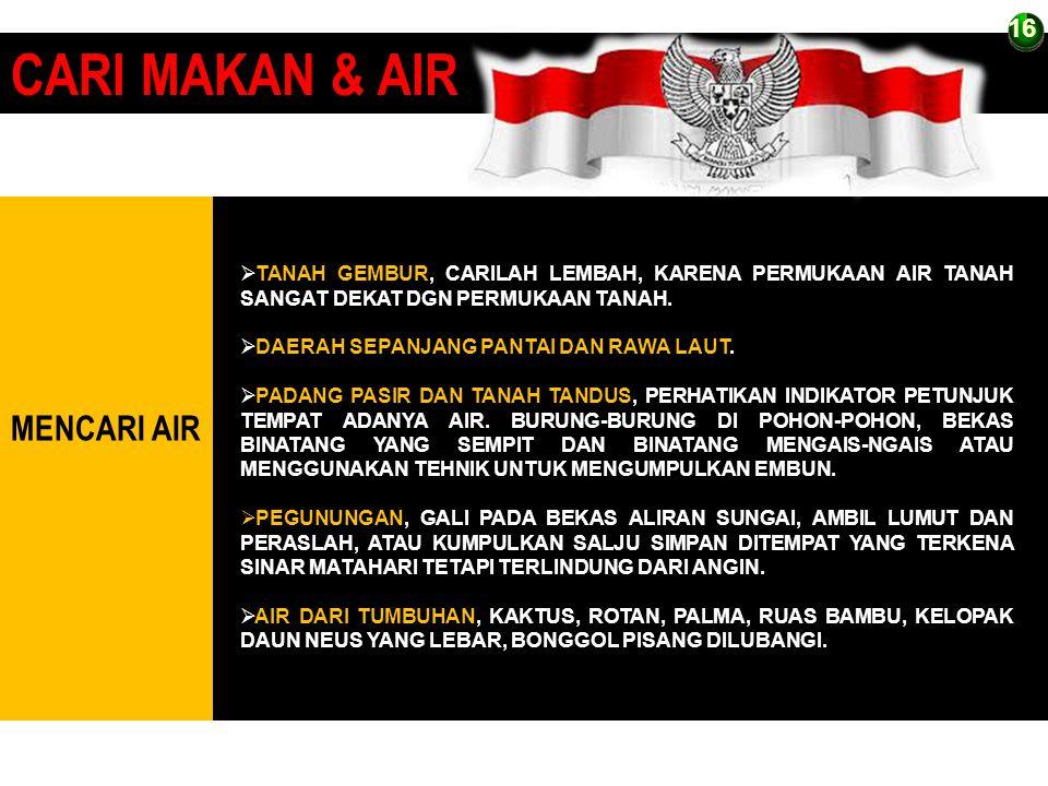 CARI MAKAN & AIR MENCARI AIR 16 16