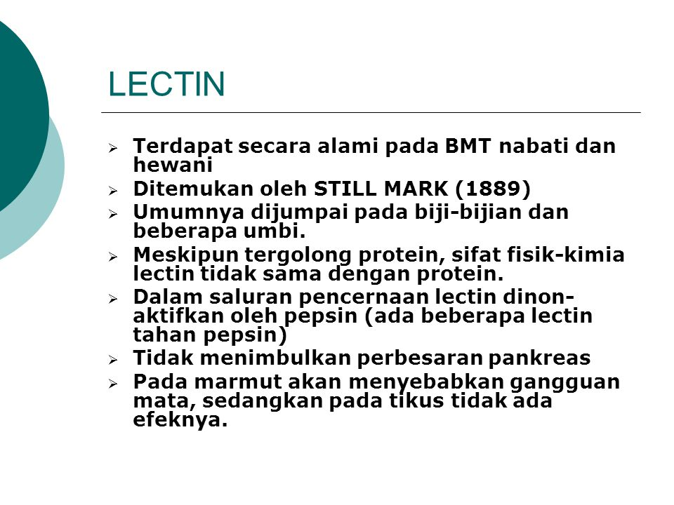 LECTIN Terdapat secara alami pada BMT nabati dan hewani