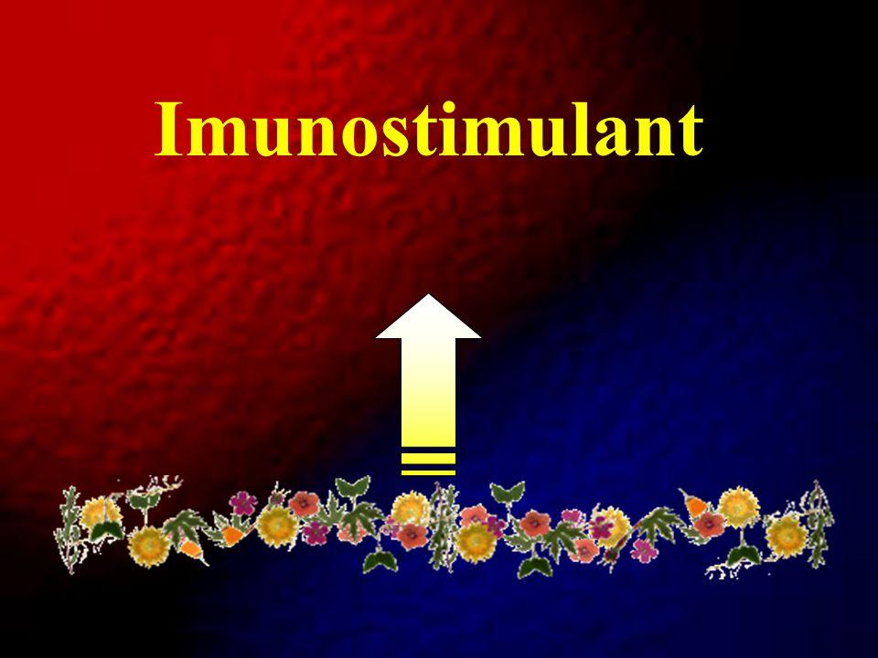Imunostimulant