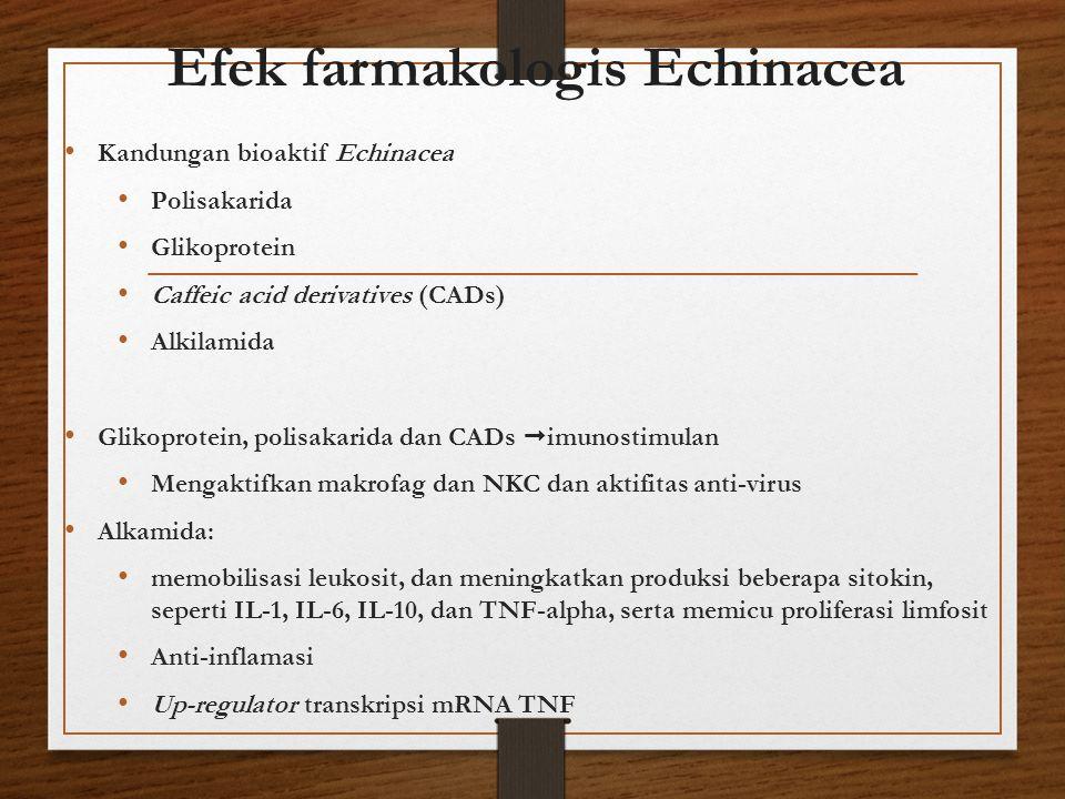 Efek farmakologis Echinacea