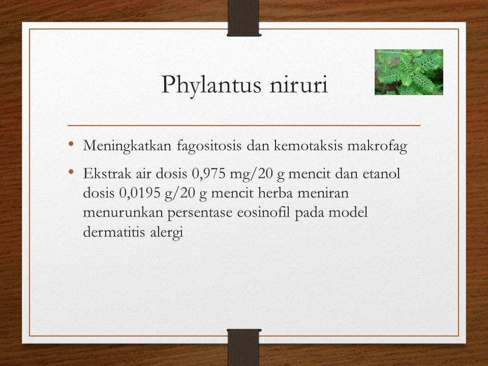 Phylantus niruri Meningkatkan fagositosis dan kemotaksis makrofag