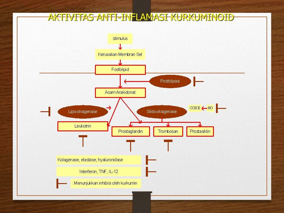 AKTIVITAS ANTI-INFLAMASI KURKUMINOID