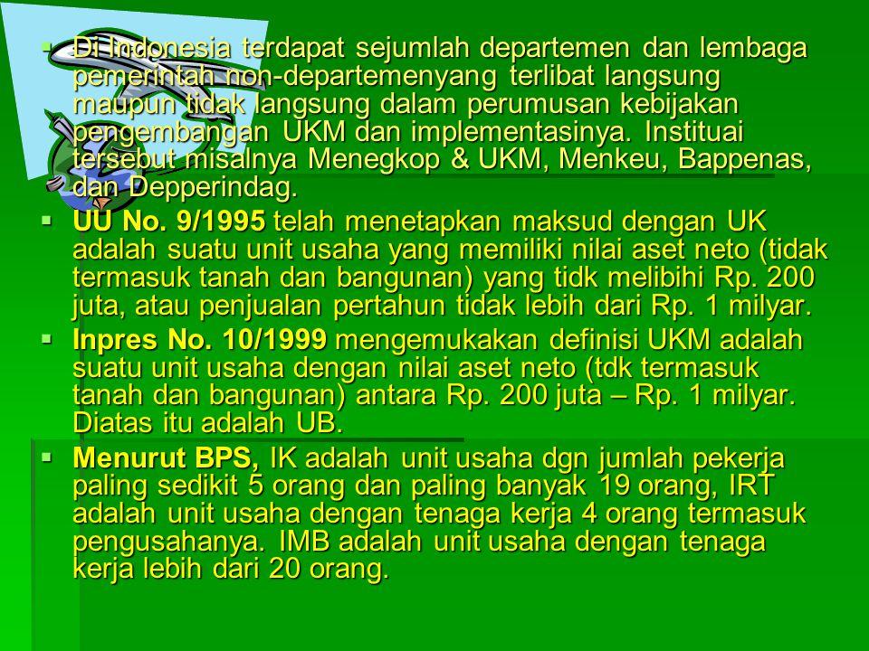 Di Indonesia terdapat sejumlah departemen dan lembaga pemerintah non-departemenyang terlibat langsung maupun tidak langsung dalam perumusan kebijakan pengembangan UKM dan implementasinya. Instituai tersebut misalnya Menegkop & UKM, Menkeu, Bappenas, dan Depperindag.