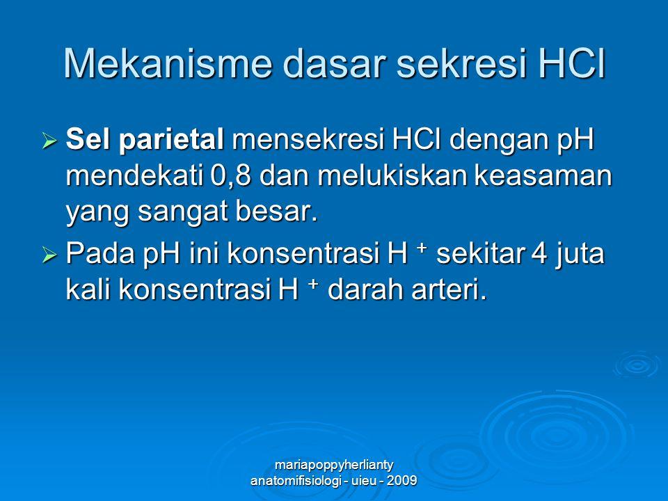 Mekanisme dasar sekresi HCl
