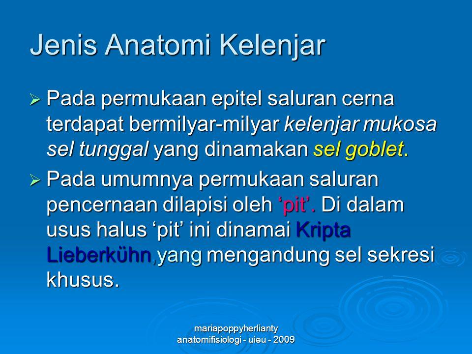 Jenis Anatomi Kelenjar
