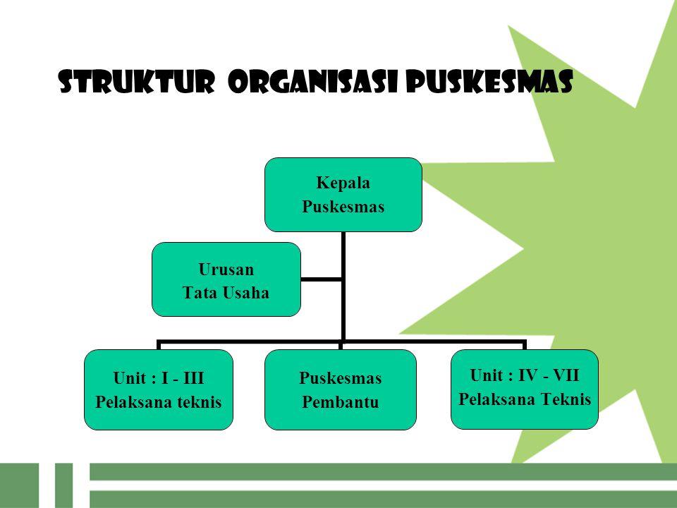 Struktur Organisasi Puskesmas