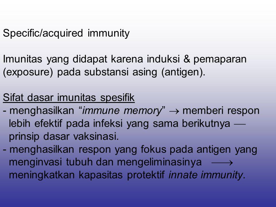 Specific/acquired immunity Imunitas yang didapat karena induksi & pemaparan (exposure) pada substansi asing (antigen).