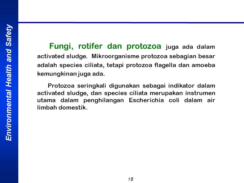 Fungi, rotifer dan protozoa juga ada dalam activated sludge