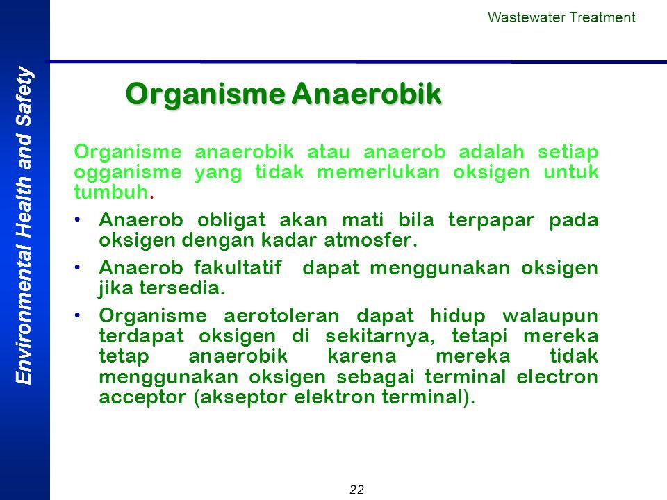 Wastewater Treatment Organisme Anaerobik. Organisme anaerobik atau anaerob adalah setiap ogganisme yang tidak memerlukan oksigen untuk tumbuh.