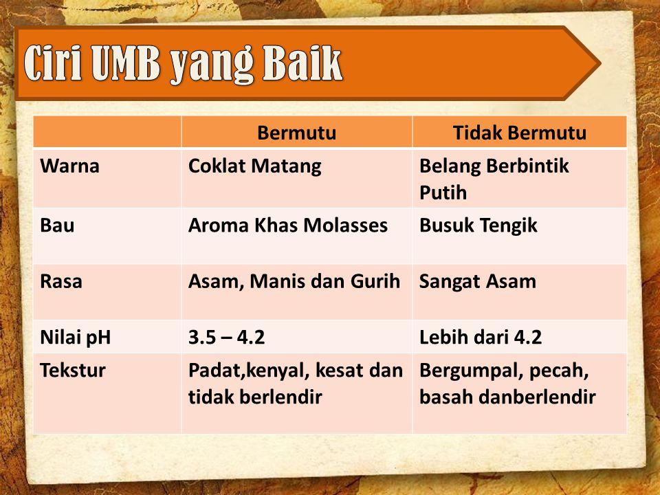 Ciri UMB yang Baik Bermutu Tidak Bermutu Warna Coklat Matang