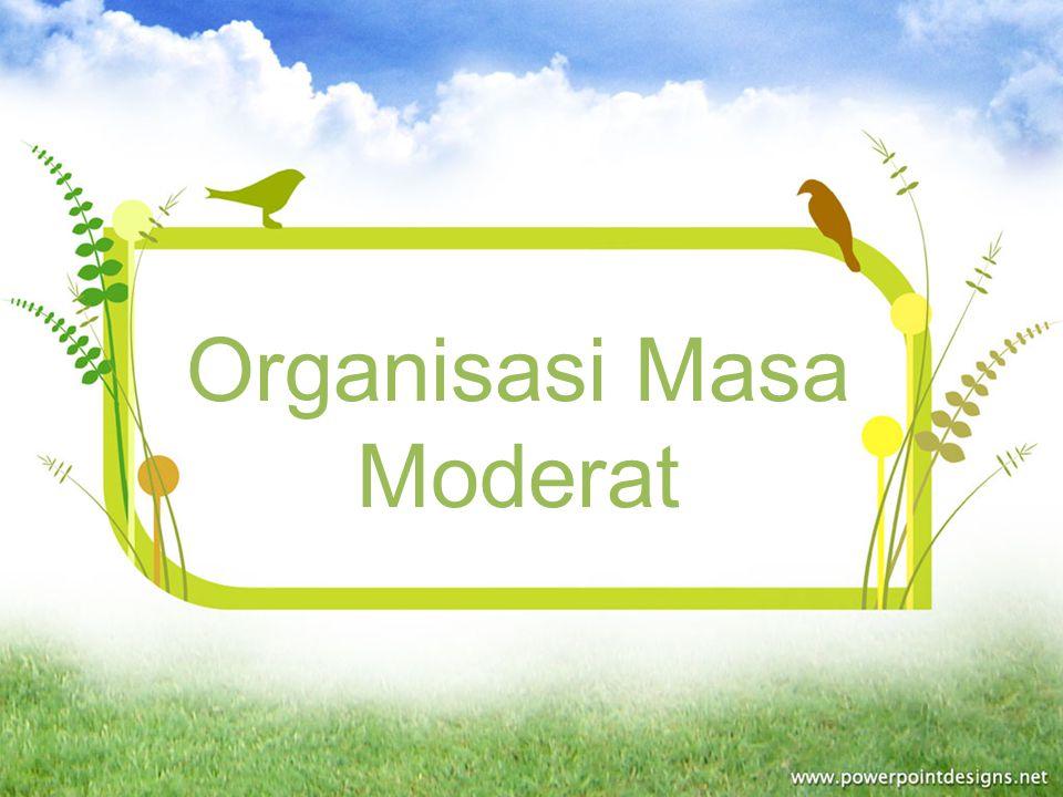 Organisasi Masa Moderat