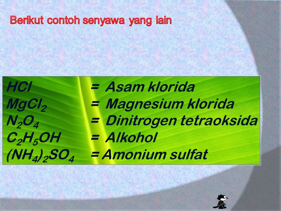 MgCl2 = Magnesium klorida N2O4 = Dinitrogen tetraoksida
