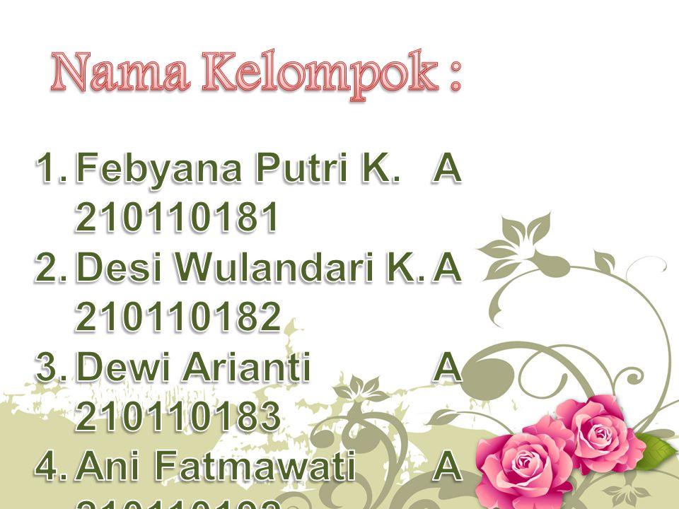 Nama Kelompok : Febyana Putri K. A 210110181