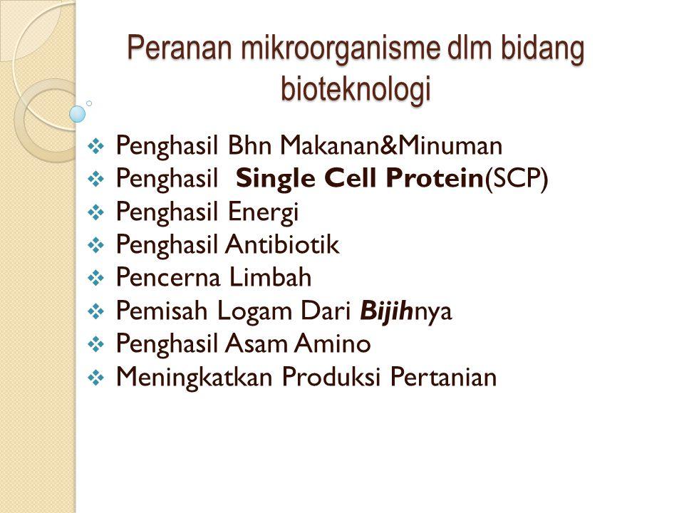 Peranan mikroorganisme dlm bidang bioteknologi