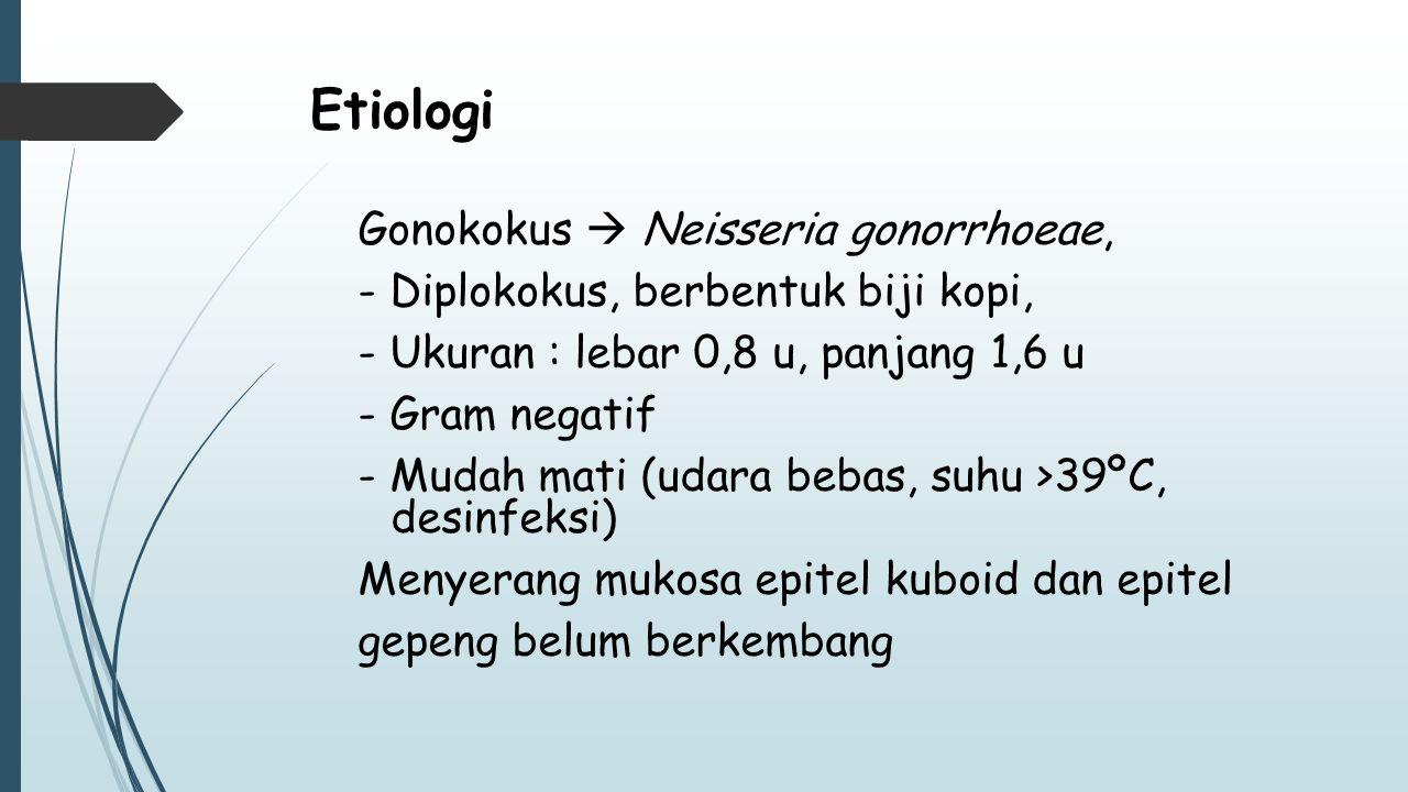 Etiologi Gonokokus  Neisseria gonorrhoeae,