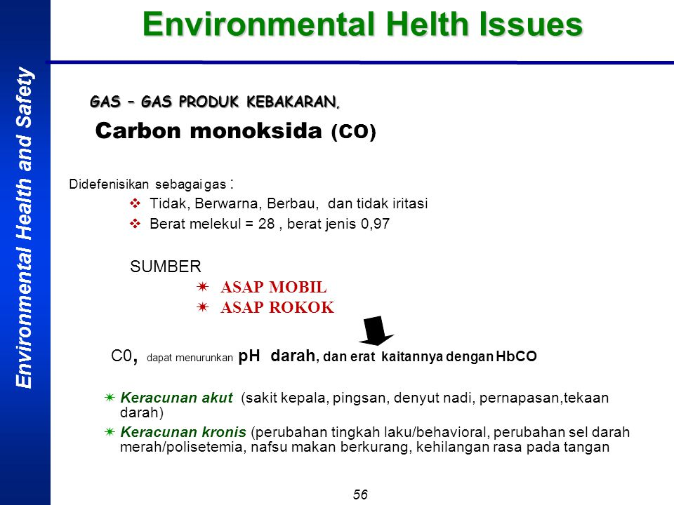 Environmental Helth Issues
