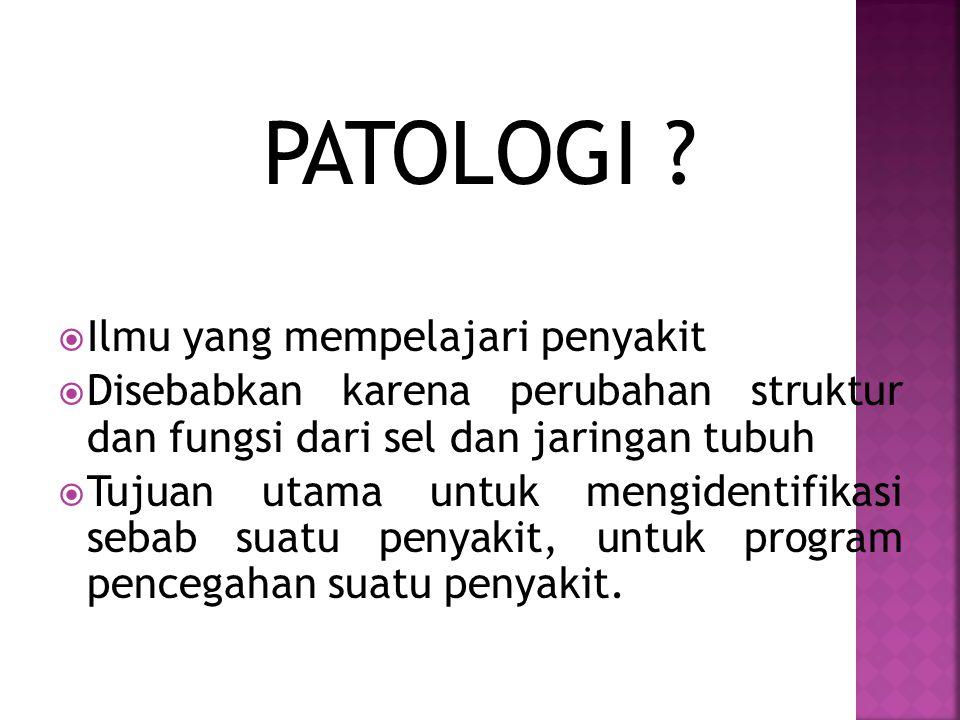 PATOLOGI Ilmu yang mempelajari penyakit
