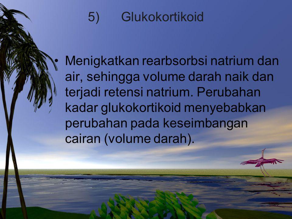 5) Glukokortikoid