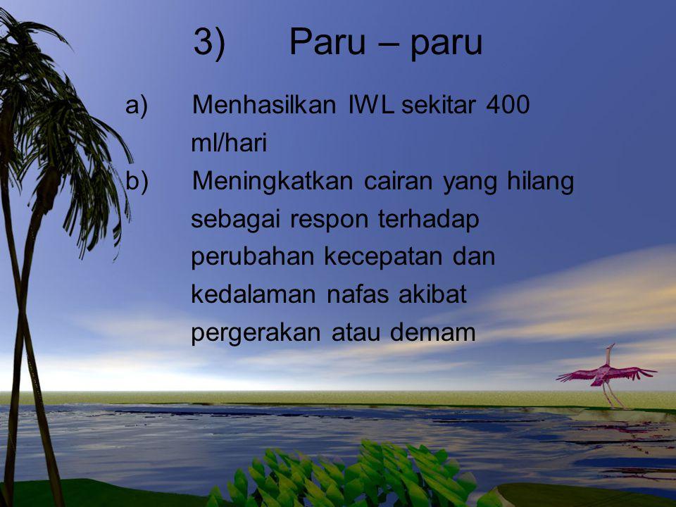 3) Paru – paru