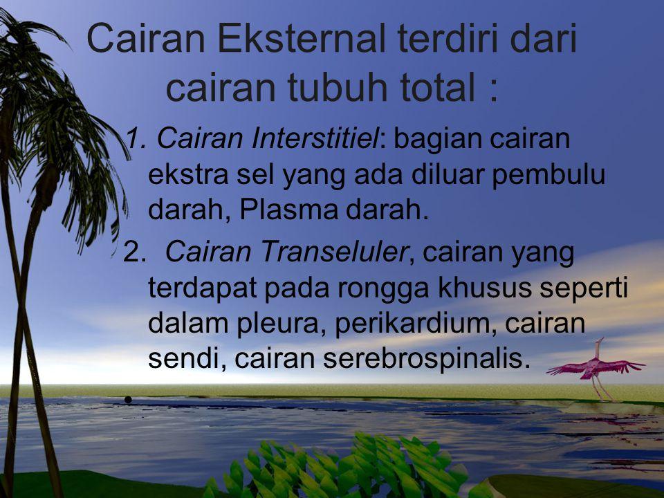 Cairan Eksternal terdiri dari cairan tubuh total :