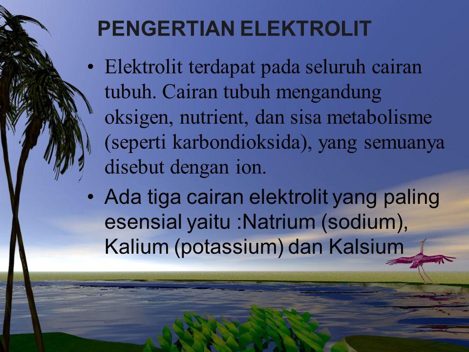 PENGERTIAN ELEKTROLIT