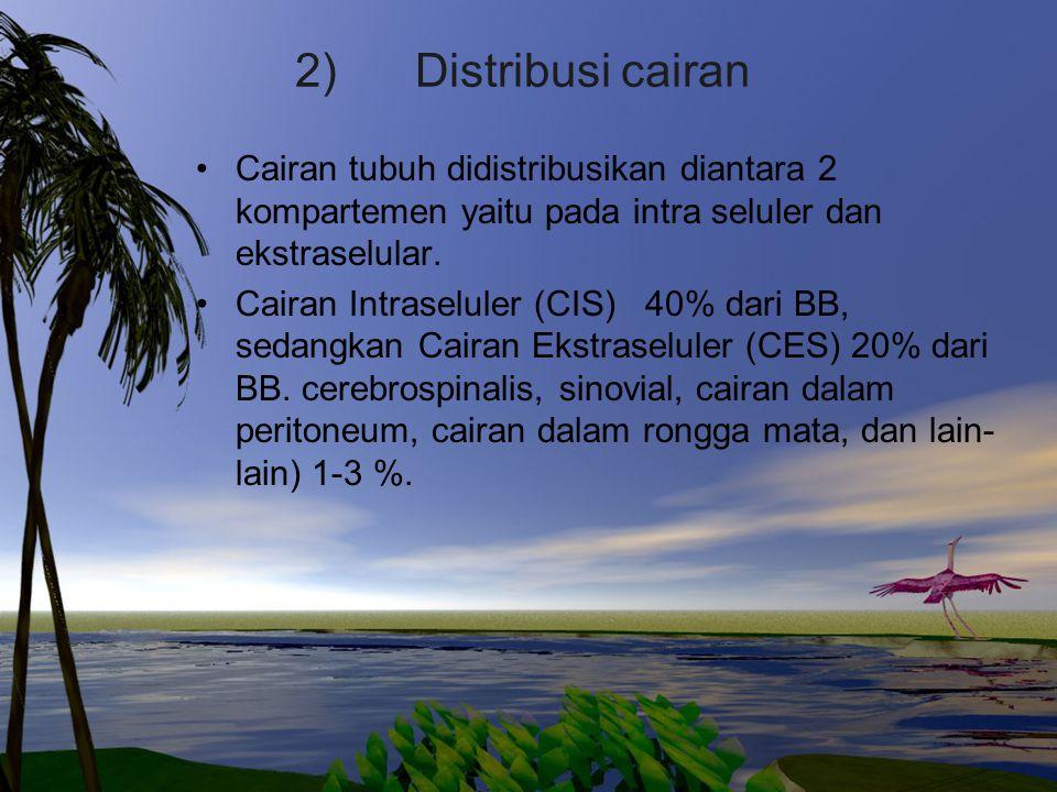 2) Distribusi cairan Cairan tubuh didistribusikan diantara 2 kompartemen yaitu pada intra seluler dan ekstraselular.