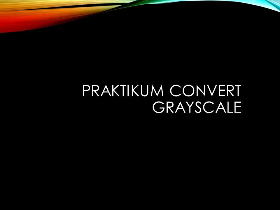 Praktikum Convert grayscale