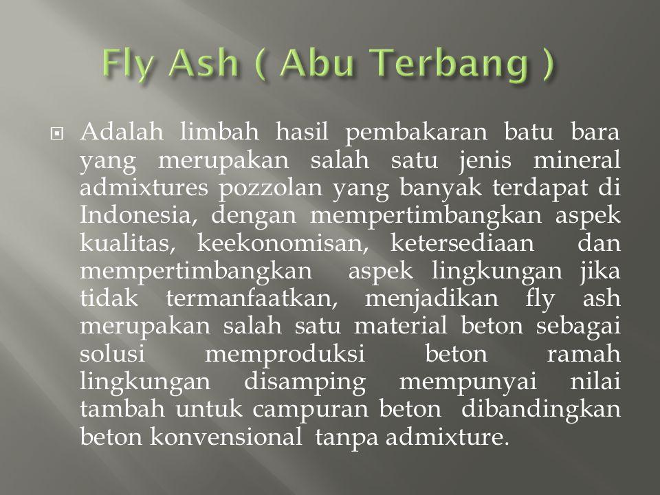 Fly Ash ( Abu Terbang )