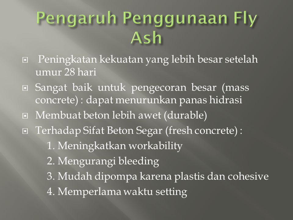 Pengaruh Penggunaan Fly Ash