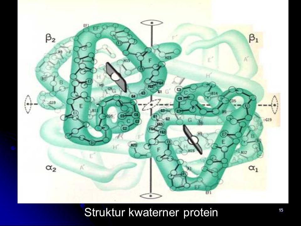 Struktur kwaterner protein