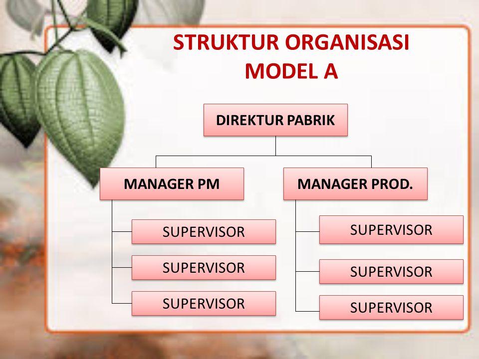 STRUKTUR ORGANISASI MODEL A