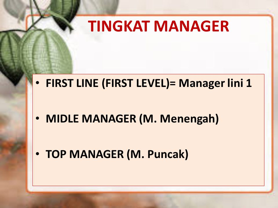 TINGKAT MANAGER FIRST LINE (FIRST LEVEL)= Manager lini 1