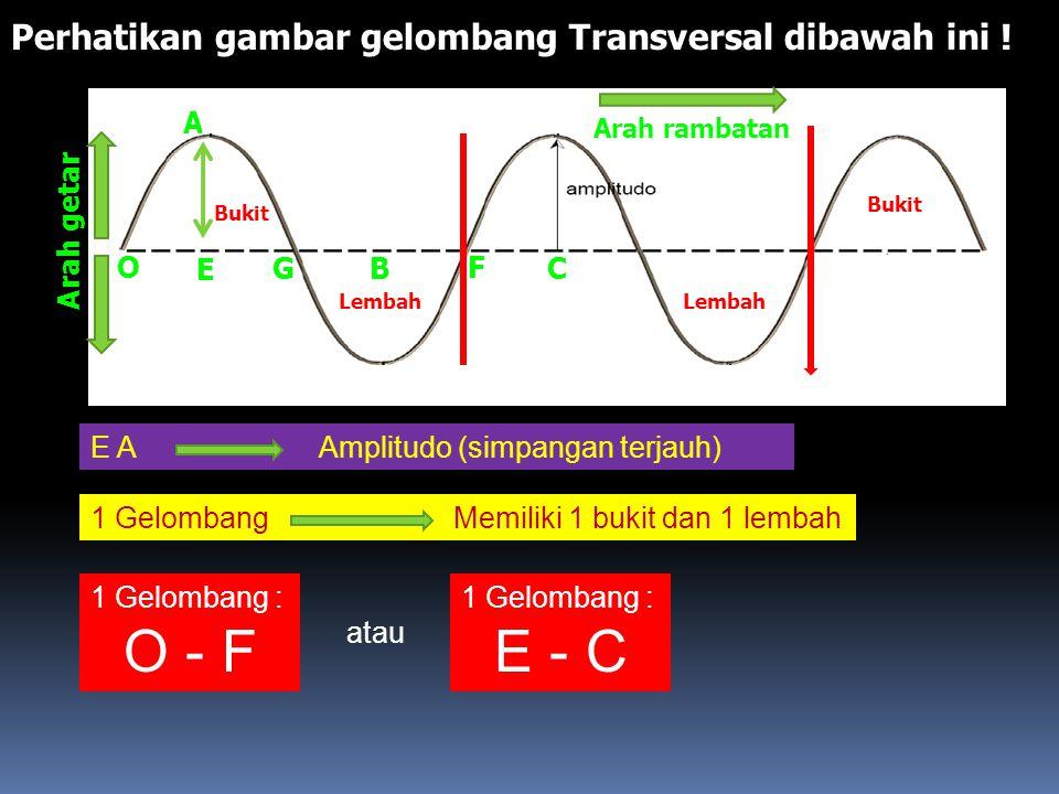 O - F E - C Perhatikan gambar gelombang Transversal dibawah ini ! A