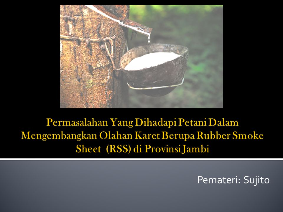 Permasalahan Yang Dihadapi Petani Dalam Mengembangkan Olahan Karet Berupa Rubber Smoke Sheet (RSS) di Provinsi Jambi