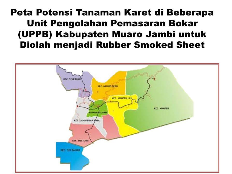 Peta Potensi Tanaman Karet di Beberapa Unit Pengolahan Pemasaran Bokar (UPPB) Kabupaten Muaro Jambi untuk Diolah menjadi Rubber Smoked Sheet
