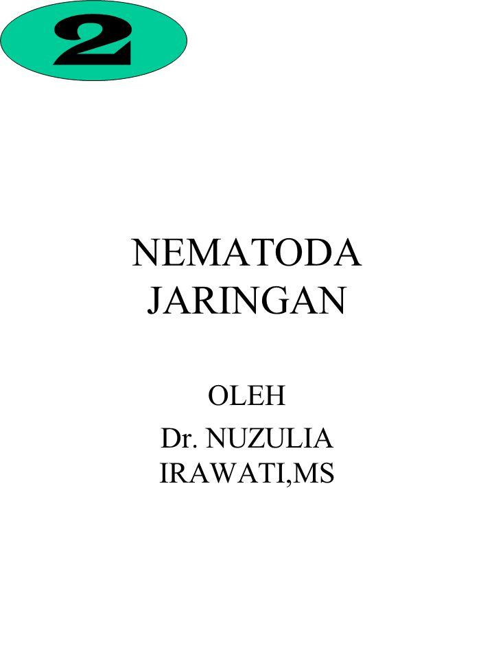 OLEH Dr. NUZULIA IRAWATI,MS