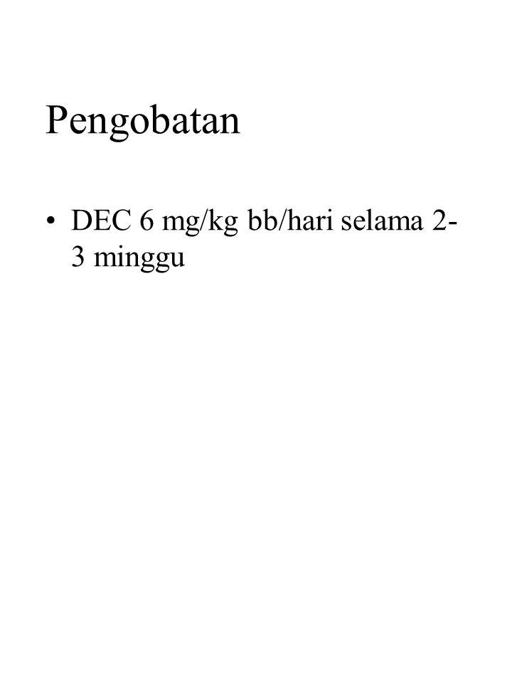 Pengobatan DEC 6 mg/kg bb/hari selama 2-3 minggu