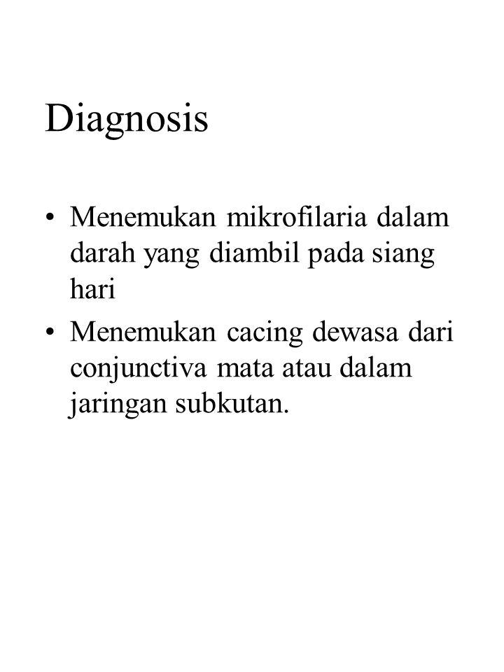 Diagnosis Menemukan mikrofilaria dalam darah yang diambil pada siang hari.