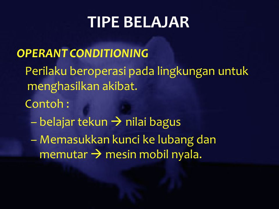 TIPE BELAJAR OPERANT CONDITIONING