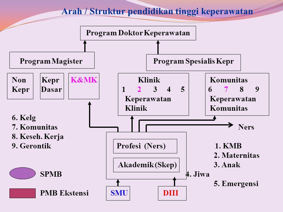Arah / Struktur pendidikan tinggi keperawatan