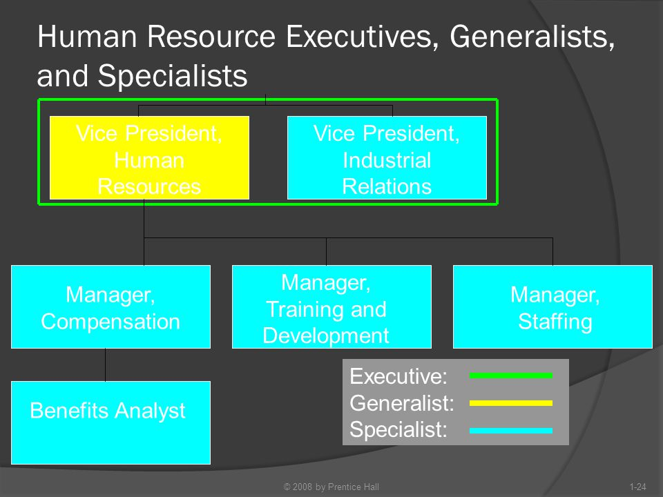 Human Resource Executives, Generalists, and Specialists