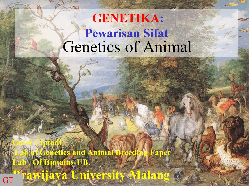Genetics of Animal GENETIKA: Pewarisan Sifat