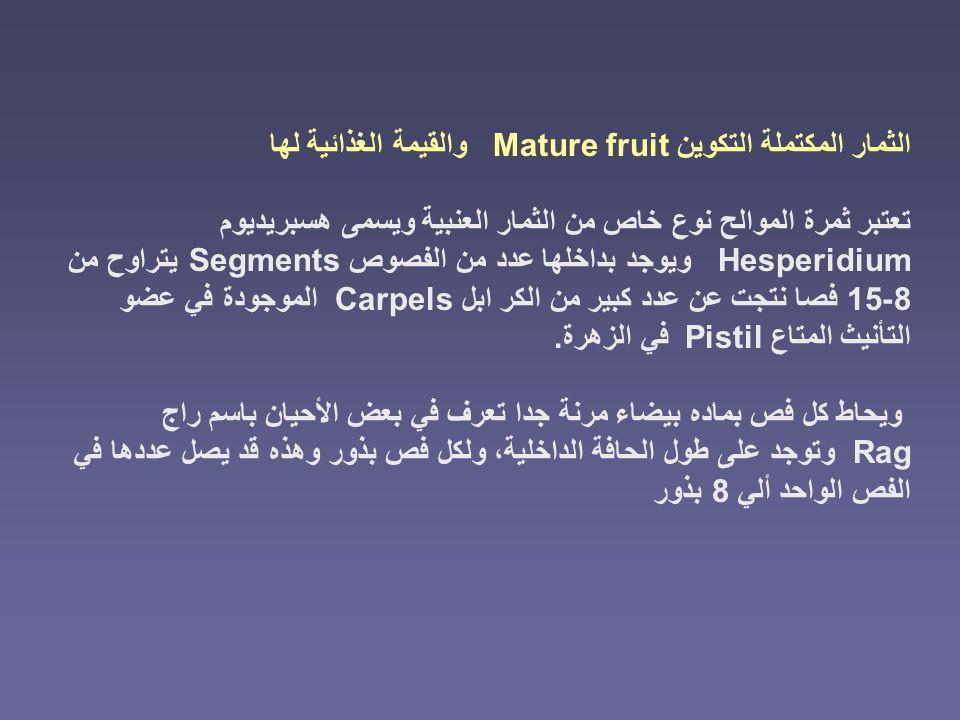 الثمار المكتملة التكوين Mature fruit والقيمة الغذائية لها