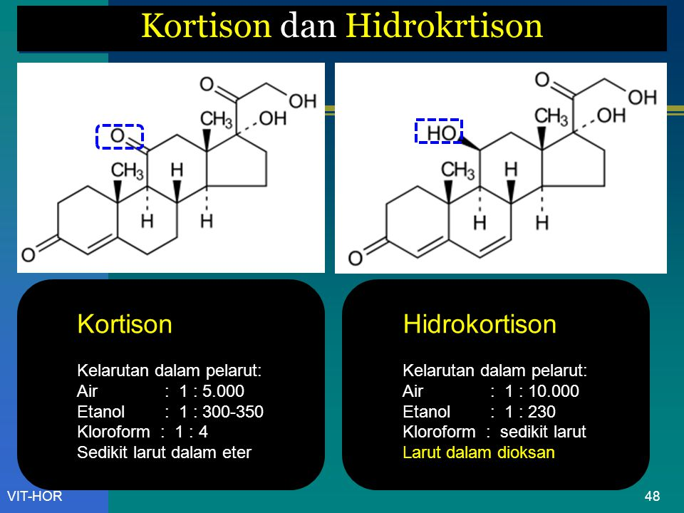 Kortison dan Hidrokrtison