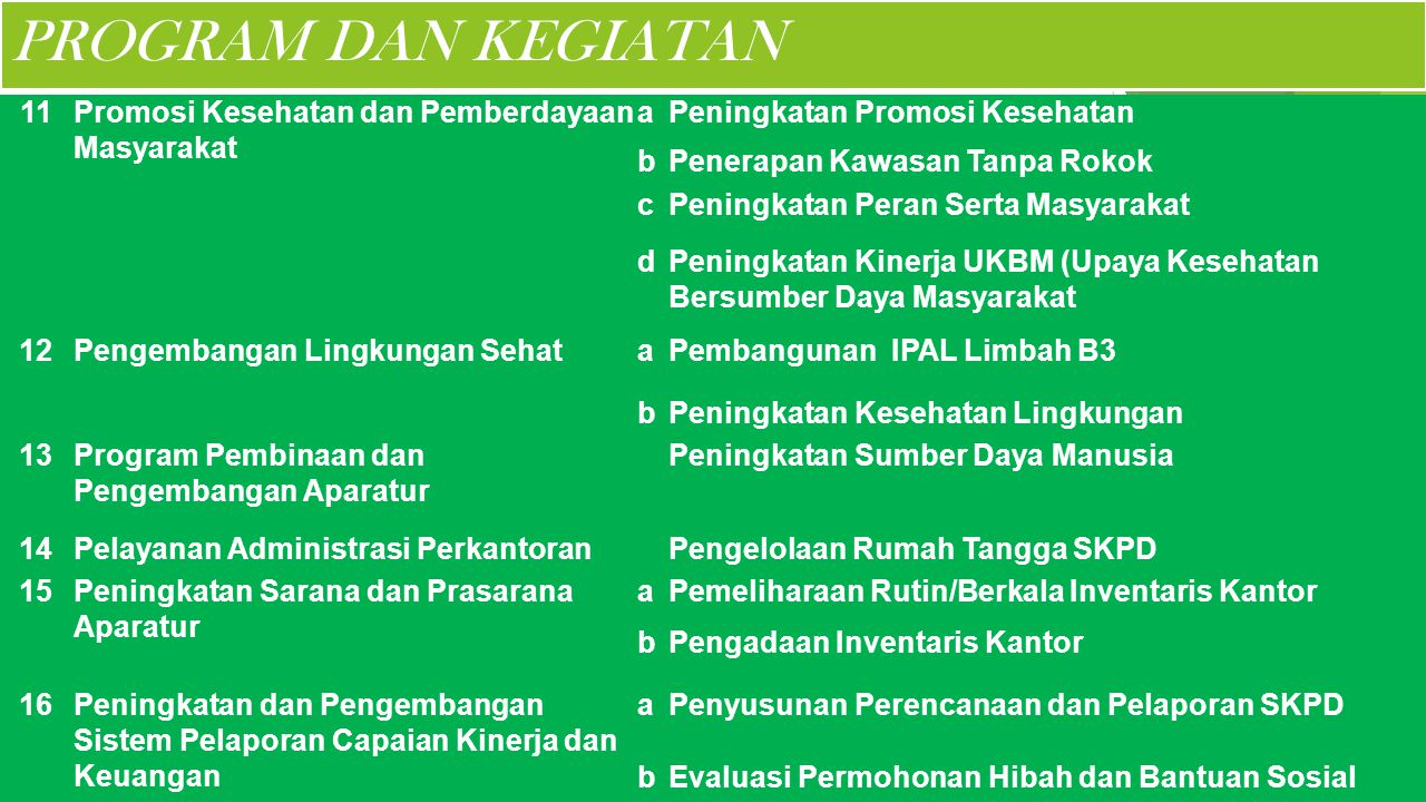 PROGRAM DAN KEGIATAN 11 Promosi Kesehatan dan Pemberdayaan Masyarakat