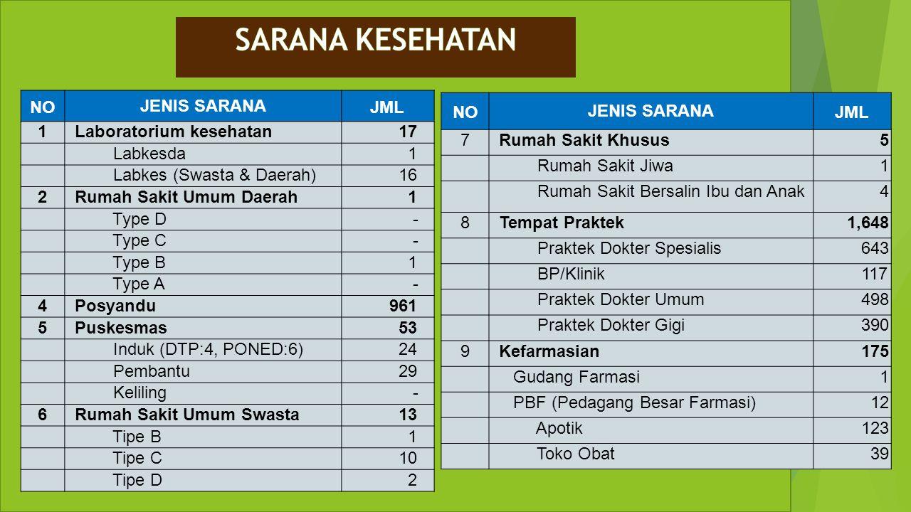SARANA KESEHATAN NO JENIS SARANA JML 1 Laboratorium kesehatan 17