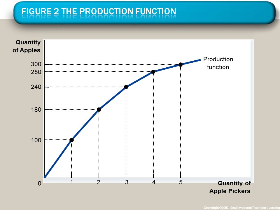 Figure 2 The Production Function