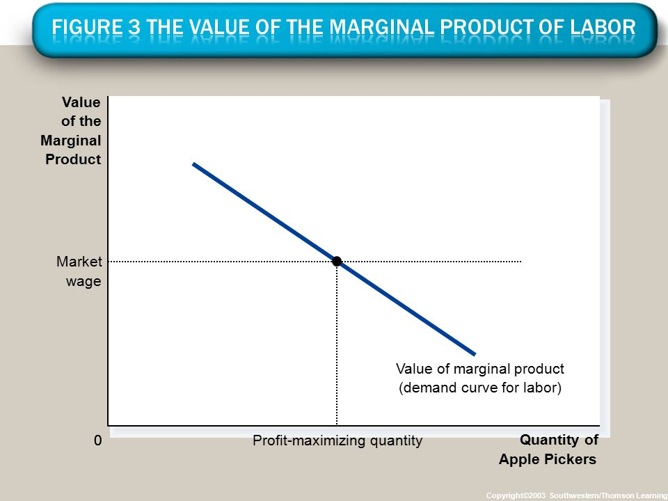 Figure 3 The Value of the Marginal Product of Labor
